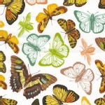 Michael Miller Fabrics - French Journal - Papillon in White