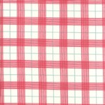 Moda Fabrics - Return Winters Lane - Checkers in Snow Berry